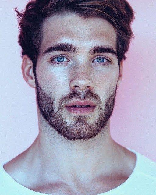 janis danner beard